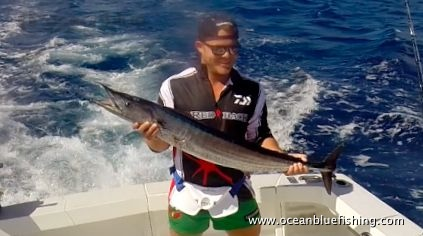 David Whitley's marlin fishing