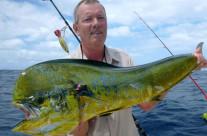 catching mahi-mahi with ocean blue fishing charters