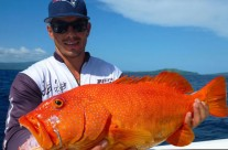 This red fish is one of a kind