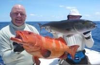 coral trout fishing vanuatu