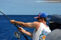 Westwood Vanuatu fish catch