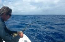 Westwood Vanuatu fishing preparation