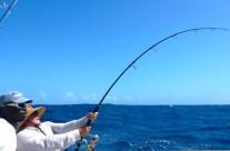 Westwood Vanuatu fishing rod