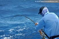 Westwood Vanuatu fishing technique