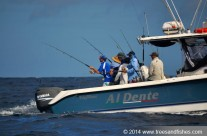 Westwood Vanuatu group fishing