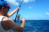 Westwood Vanuatu solo fishing