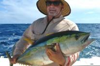 Westwood Vanuatu yellowfin fish