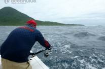 Sean Tieck crew actual fishing