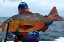 Sean Tieck crew red bass fish