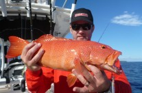 red bass fish by Sean Tieck's crew